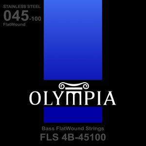 FLS 4B-45100